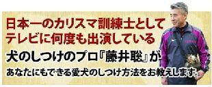 inu-shituke310x127.jpg